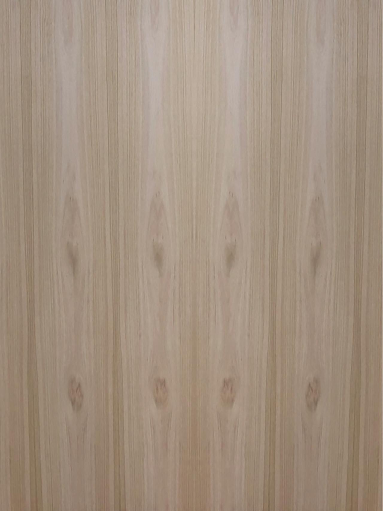 Eucalyptus Natural Crown Cut