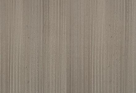 Eucalyptus Bronze