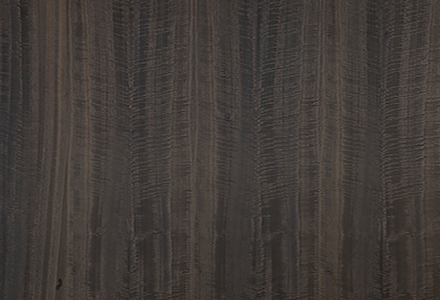 Eucalyptus Fumé Figuré