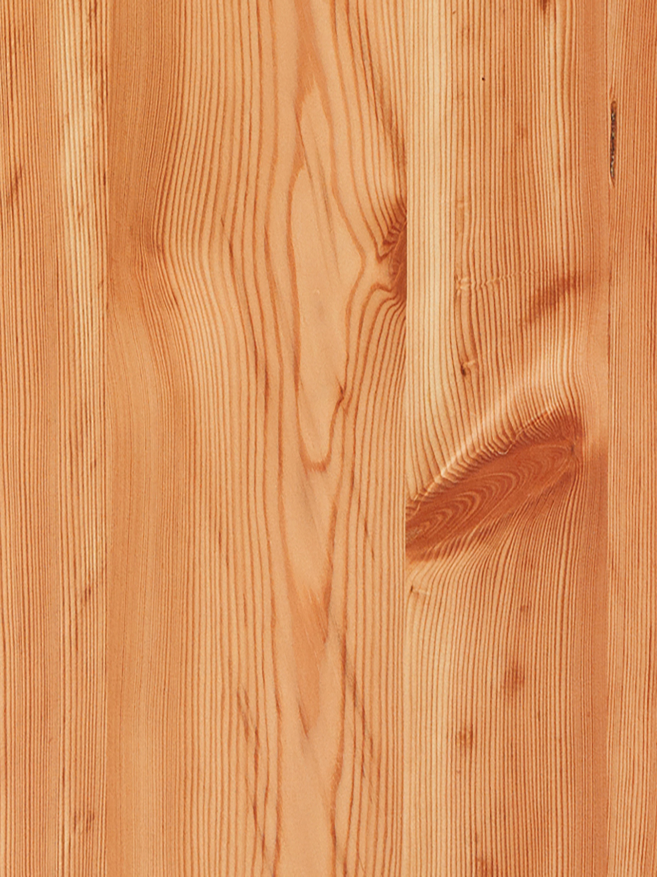Larch Rustic
