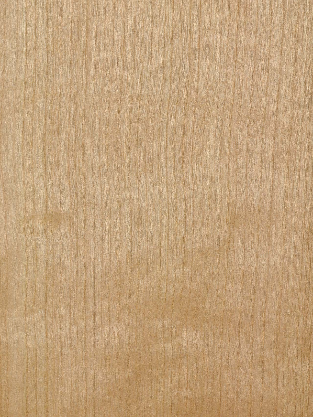 Chapa Cerezo Europeo Mallado Losán