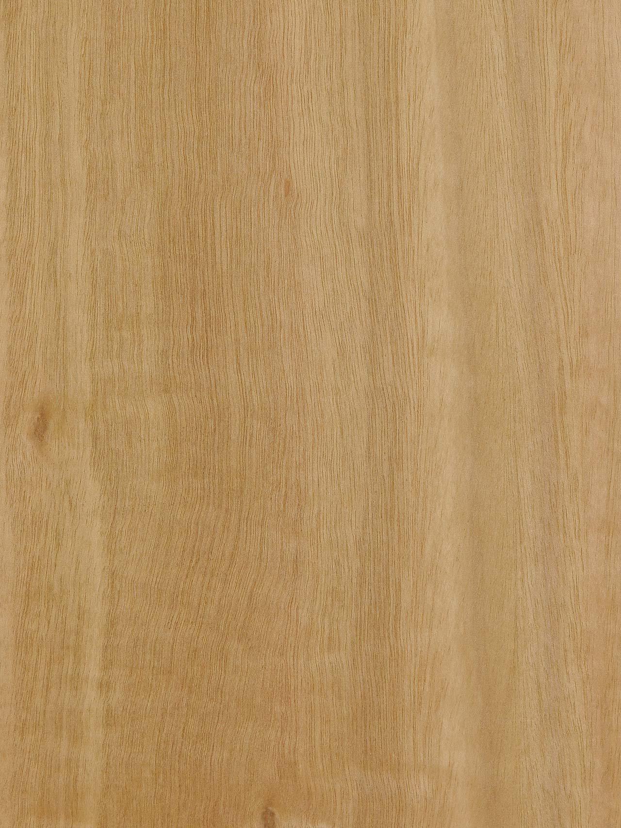 Chapa Eucalipto Rameado Losán