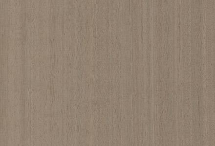 Eucalyptus Avellana MBF 112