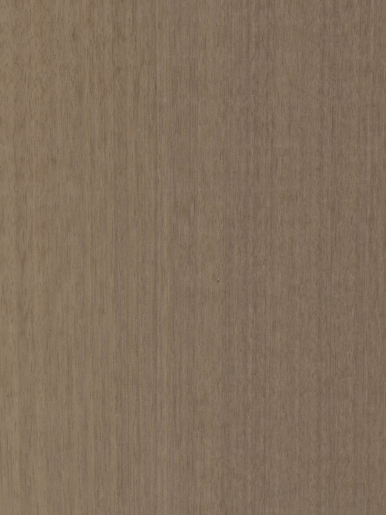 Chapa de Madera Eucalipto Bronce MBF112 Losán