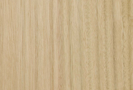 Eucalyptus Quarter Cut Veneer Panel