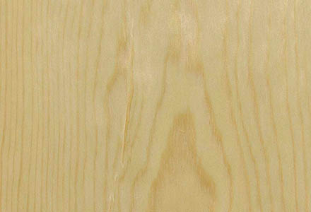 Valsain Pine Crown Cut Veneer Panel