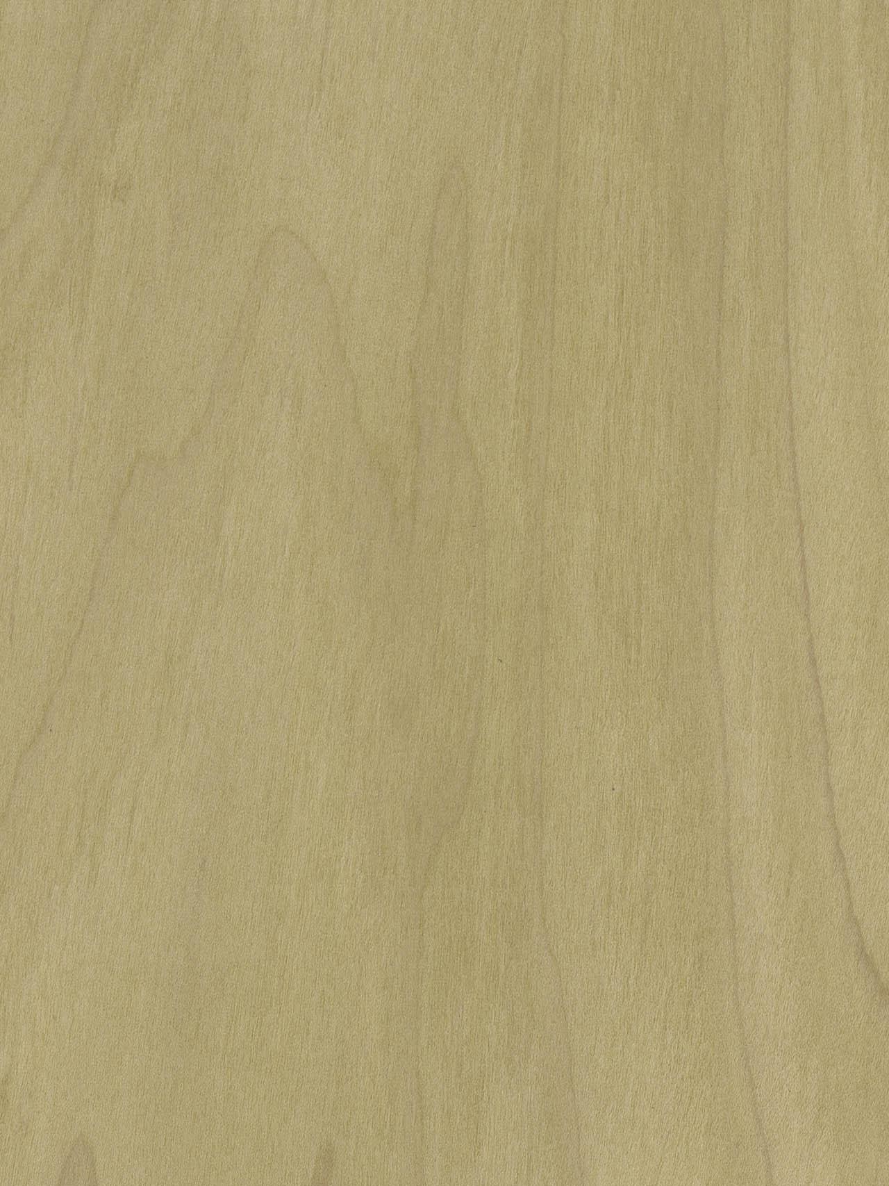 Chapa de madera Tulipié Esmeralda Losán